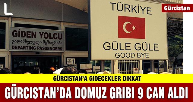 Gürcistan'da Domuz Gribi Alarmı. Türkiyeliler dikkat