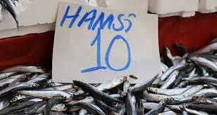 Karadeniz İçin Hamsi Vakti. Hamsinin Kaynağı Rize'de 10 Lira